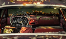dashboard in red